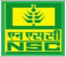 NSCL MT Recruitment 2019